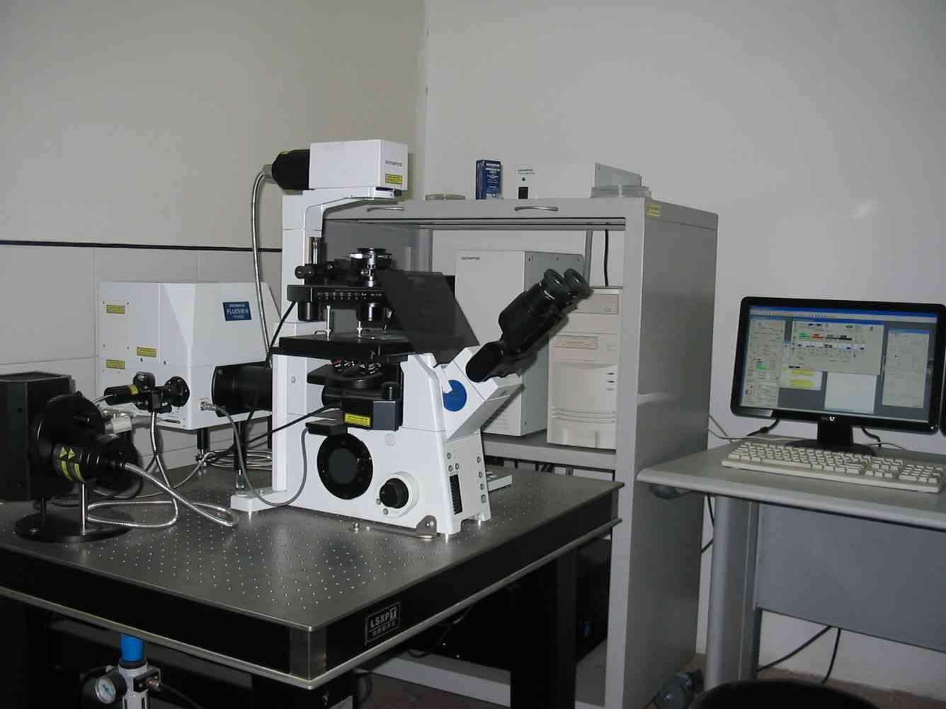 激光共聚焦扫描显微镜
